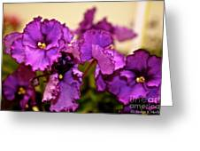 Purple And More Purple Greeting Card