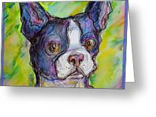 Purple Boston Terrier Greeting Card by M C Sturman