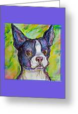 Purple Boston Terrier Greeting Card