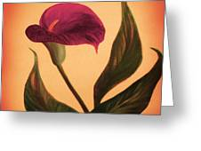 Purple Calla Lily - Square Painting Greeting Card