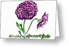 Purple Chrysanthamums Greeting Card