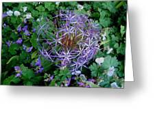 Purple Flower Sphere Greeting Card