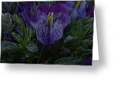 Purple Flower Springs Greeting Card