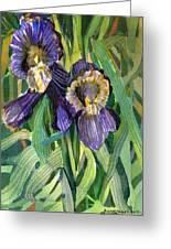 Purple Irises Greeting Card by Mindy Newman
