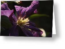 Purple Lady Greeting Card
