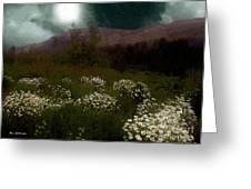 Purple Mountain Meadow Greeting Card