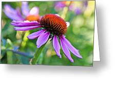 Purple Pedals Greeting Card