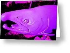 Purple Salmon Greeting Card