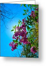 Purple Welcome Greeting Card