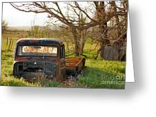 Put Out To Pasture2 Greeting Card