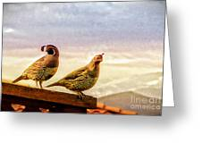 Quail And His Lady Greeting Card