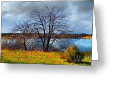Quarry Lakes In Fremont California . 7d12636 Greeting Card by Wingsdomain Art and Photography