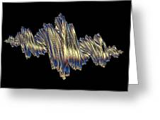 Quaternionic Fractals Greeting Card