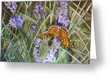 Queen Of Spain Fritillary And Lavender II Greeting Card
