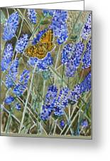 Queen Of Spain Fritillary And Lavender Greeting Card