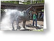 Quick Shower Before The Race Greeting Card