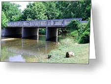 Quiet Creek Greeting Card