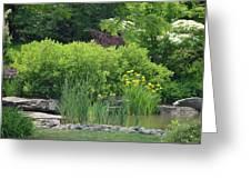 Quiet Pond Greeting Card