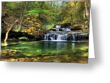 Quinn Run Cascades Greeting Card