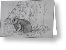 Rabbit In Woodland Greeting Card