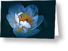 Radiance Greeting Card
