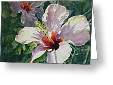Radiant Light - Hibiscus Greeting Card
