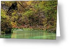 Radovna River In Vintgar Gorge Slovenia Greeting Card