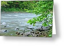 Raging River Greeting Card