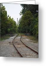 Rail To The Forest Greeting Card