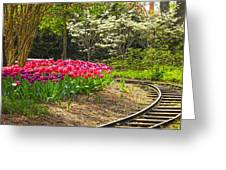 Railroad Beauties Greeting Card