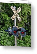 Railroad Crossing Light And Greenery Greeting Card