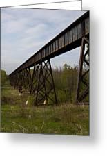 Railroad High Bridge 3 Greeting Card