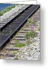 Railroad To Yukon Greeting Card