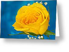 Rain On A Yellow Rose Greeting Card