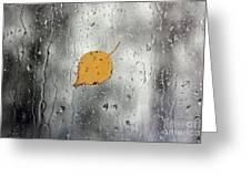 Rain On Window With Leaf Greeting Card