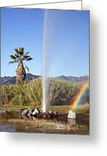 Rainbow At Old Faithful Greeting Card