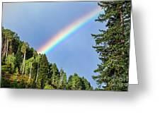 Rainbow Closeup Greeting Card
