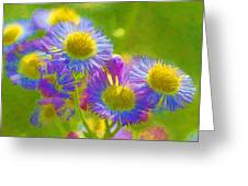 Rainbow Colored Weed Daisies Greeting Card