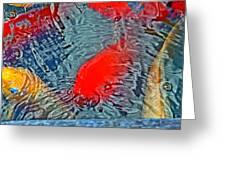 Rainbow Coy Greeting Card