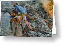 Rainbow Crab Greeting Card