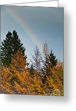 Rainbow Forest Greeting Card