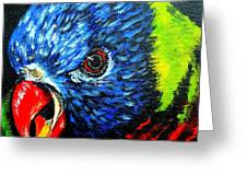 Rainbow Lorikeet Look Greeting Card