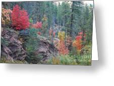 Rainbow Of The Season Greeting Card by Heather Kirk