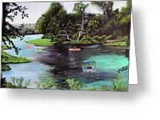 Rainbow Springs In Florida Greeting Card