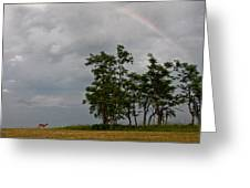 Rainbows End Greeting Card