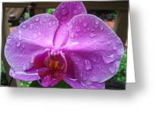 Raindrop Greeting Card