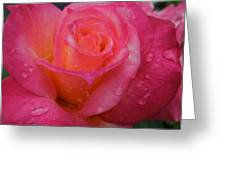 Raindrops On Roses Ten Greeting Card