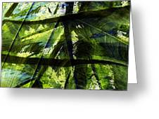 Rainforest Abstract Greeting Card by Bonnie Bruno