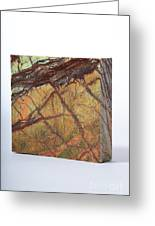 Rainforest Green Marble Greeting Card