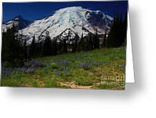 Rainier From The Sourdough Trail Greeting Card